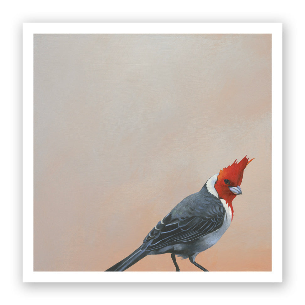 "12 x 12 Limited Edition Art Print - Surprise, Surprise - This Self-Described ""Cheeky Bastard""..."