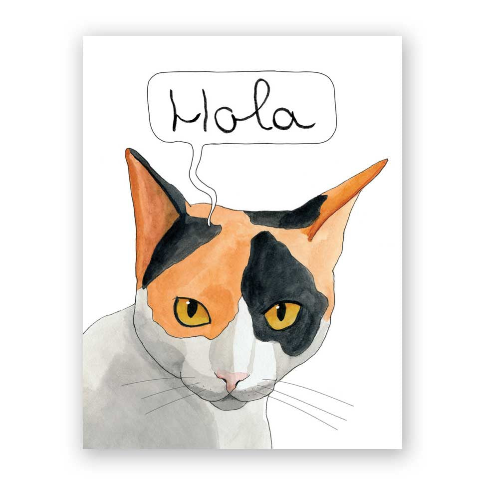 Hola Cat Card