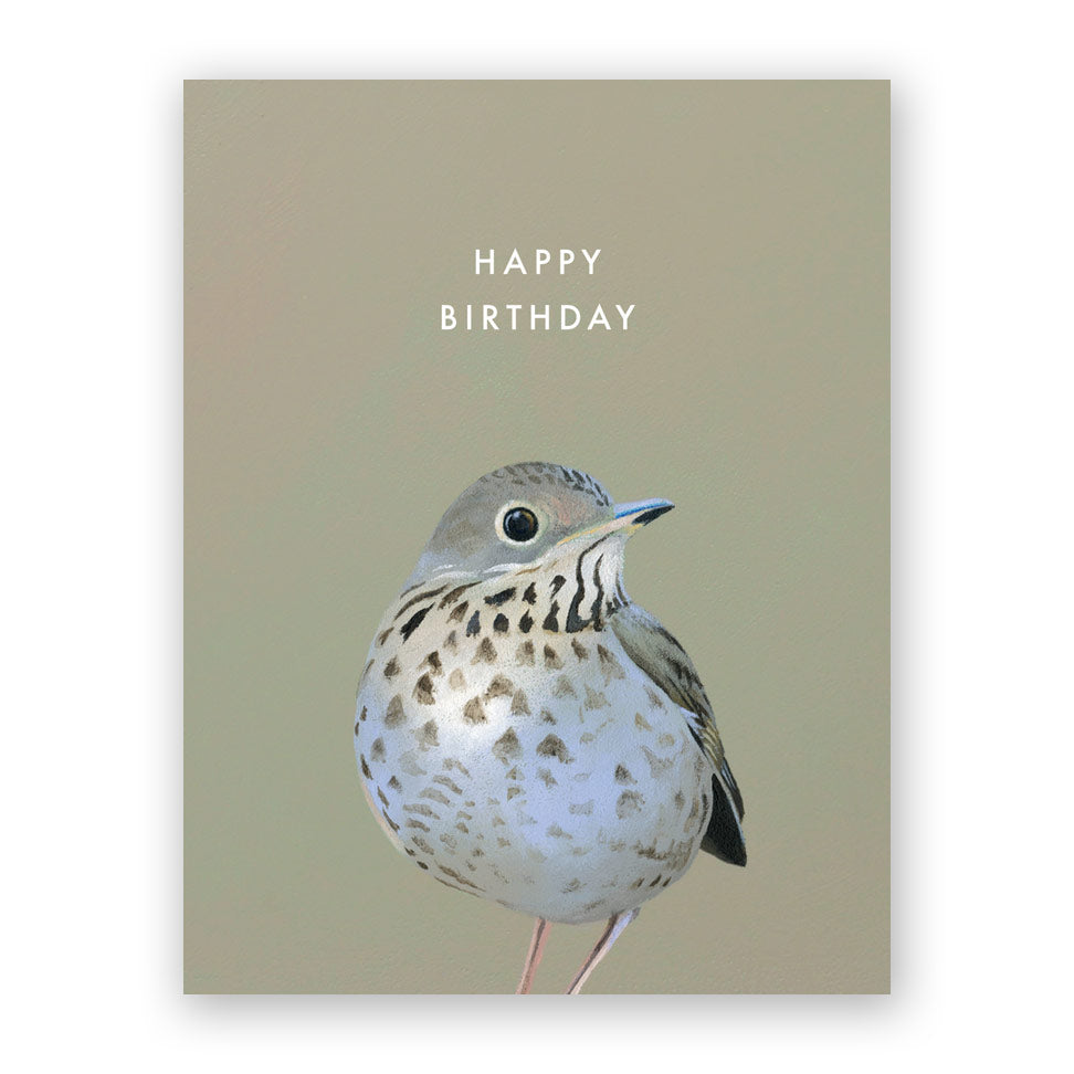 Thrush Birthday Card