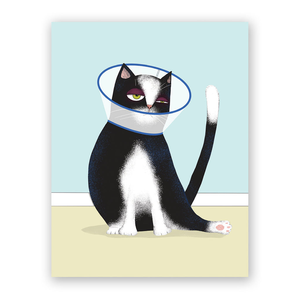 Cone Cat Get Well Card