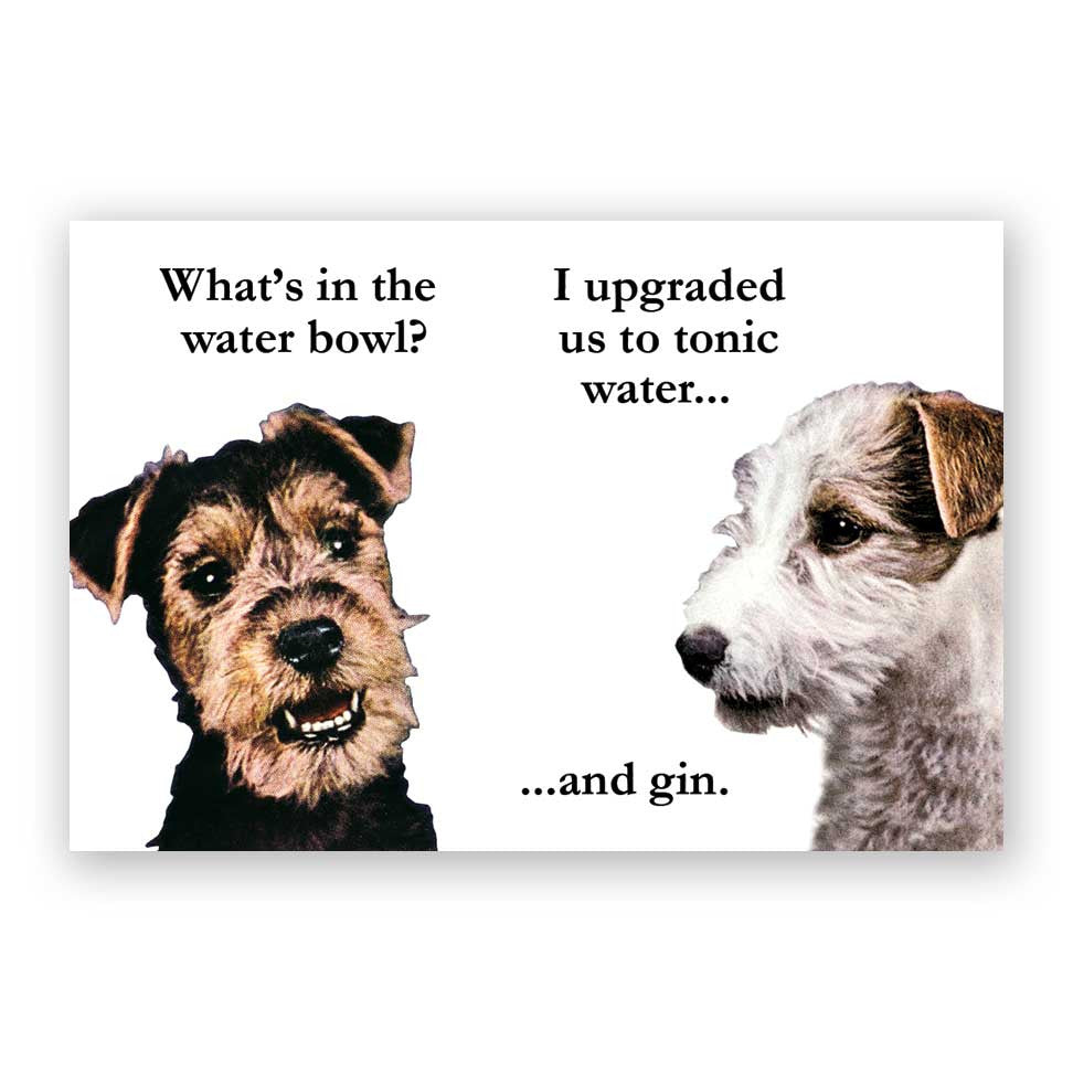 Gin and Tonic Dogs Magnet