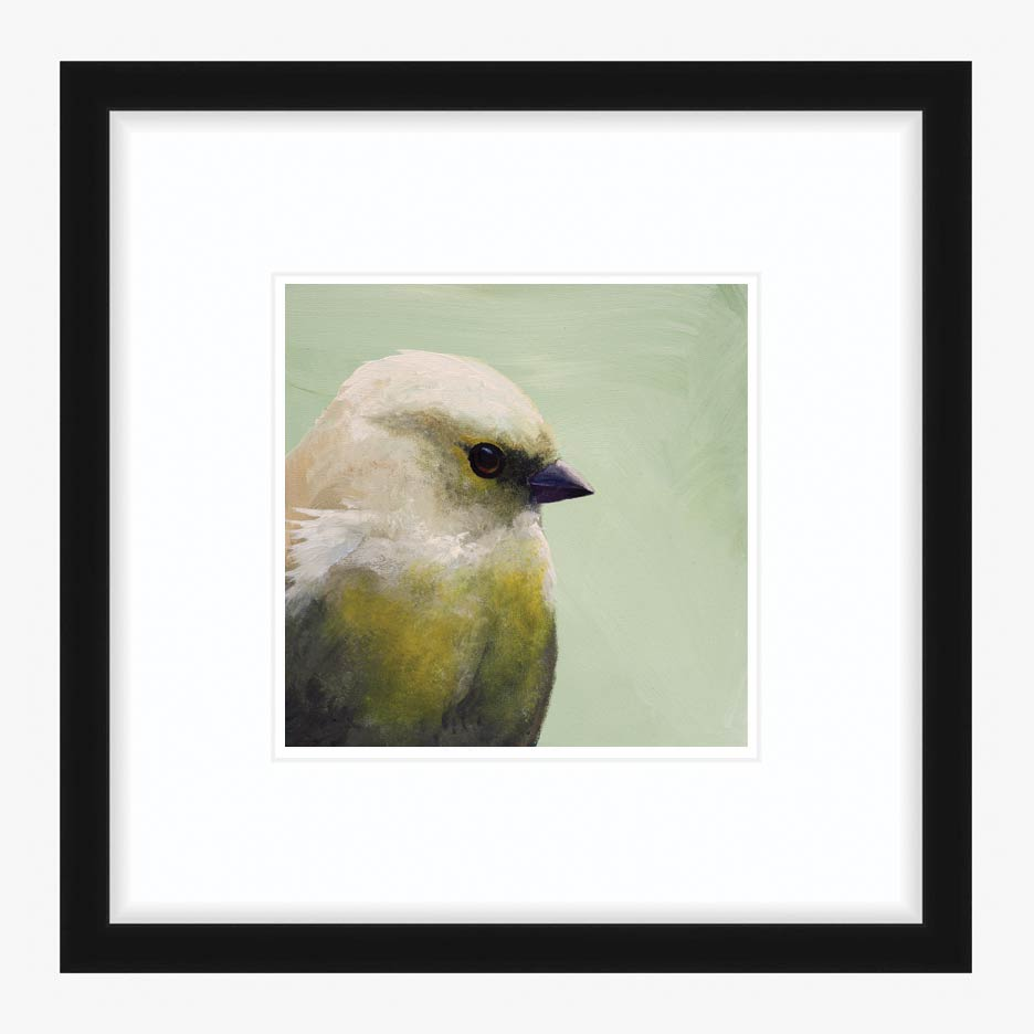 8x8 Bird Art Print with Black Frame
