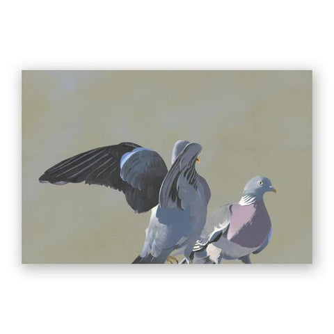 Self Care Postcards - Set of 12 - Troubled Birds