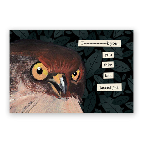 Matt Adrian Fine Art Eagle Postcards - Set of 12