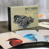 Matt Adrian Fine Art Postcard Set of 50
