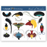Birds of Paradise Mini 100 Piece Puzzle