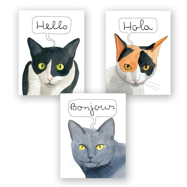 International Cat Hello Card Set of 12