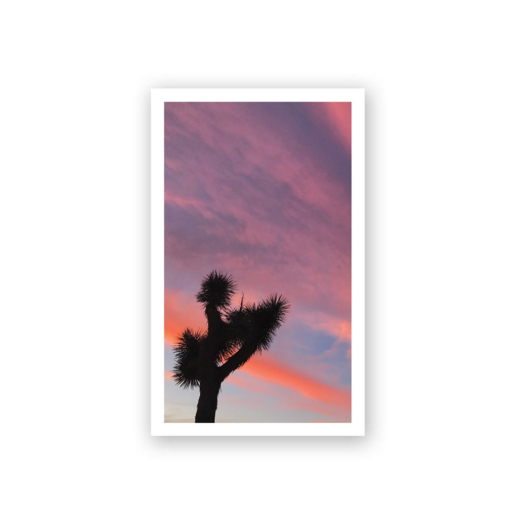 JT Sunset Mini Card