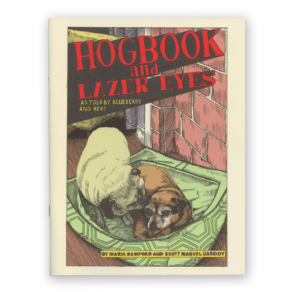 Hogbook and Lazer Eyes Comic Book