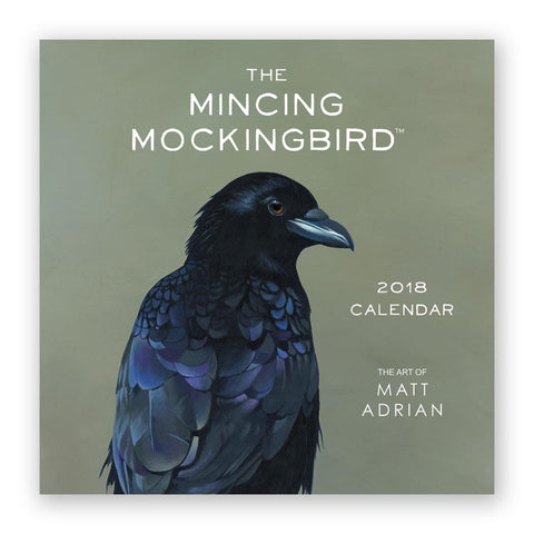 The Mincing Mockingbird Guide to Troubled Birds Book