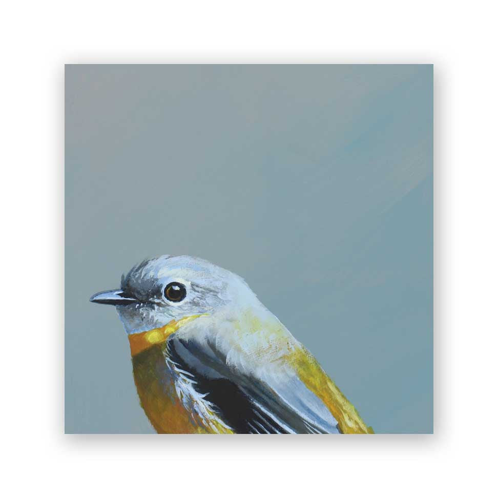 4 x 4 Eastern Yellow Robin Wings on Wood Decor