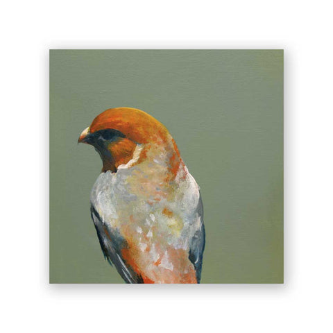 6 x 6 Zebra Finch Wings on Wood Decor