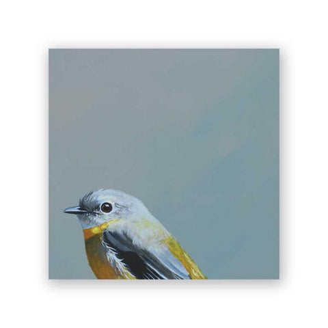 10 x 10 Fictional Finch Group Wings on Wood Decor