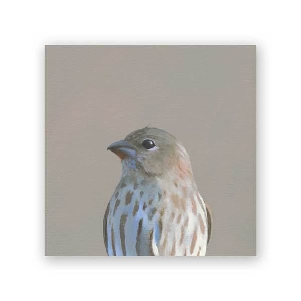 House Finch Wood Panel