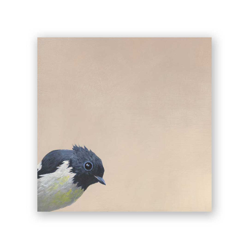 6 x 6 South Island Robin Wings on Wood Decor