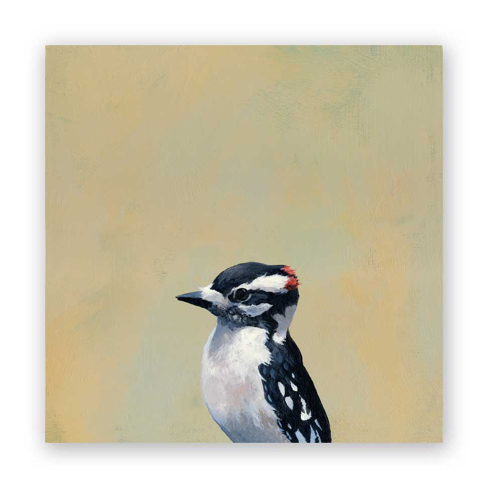 Downy Woodpecker Wood Panel
