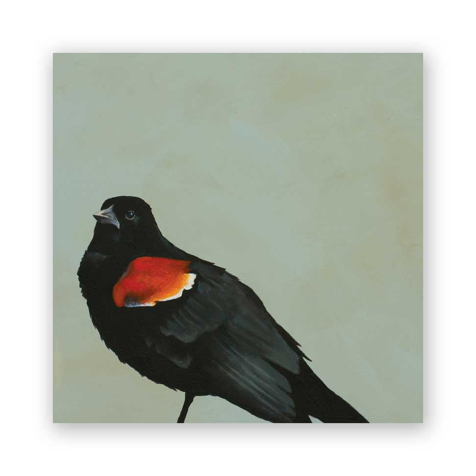 8 x 8 Tri-Colored Blackbird Wings on Wood Decor