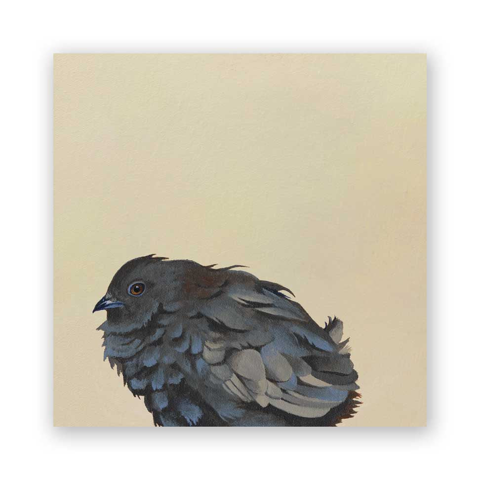 8 x 8 Button Quail Wings on Wood Decor