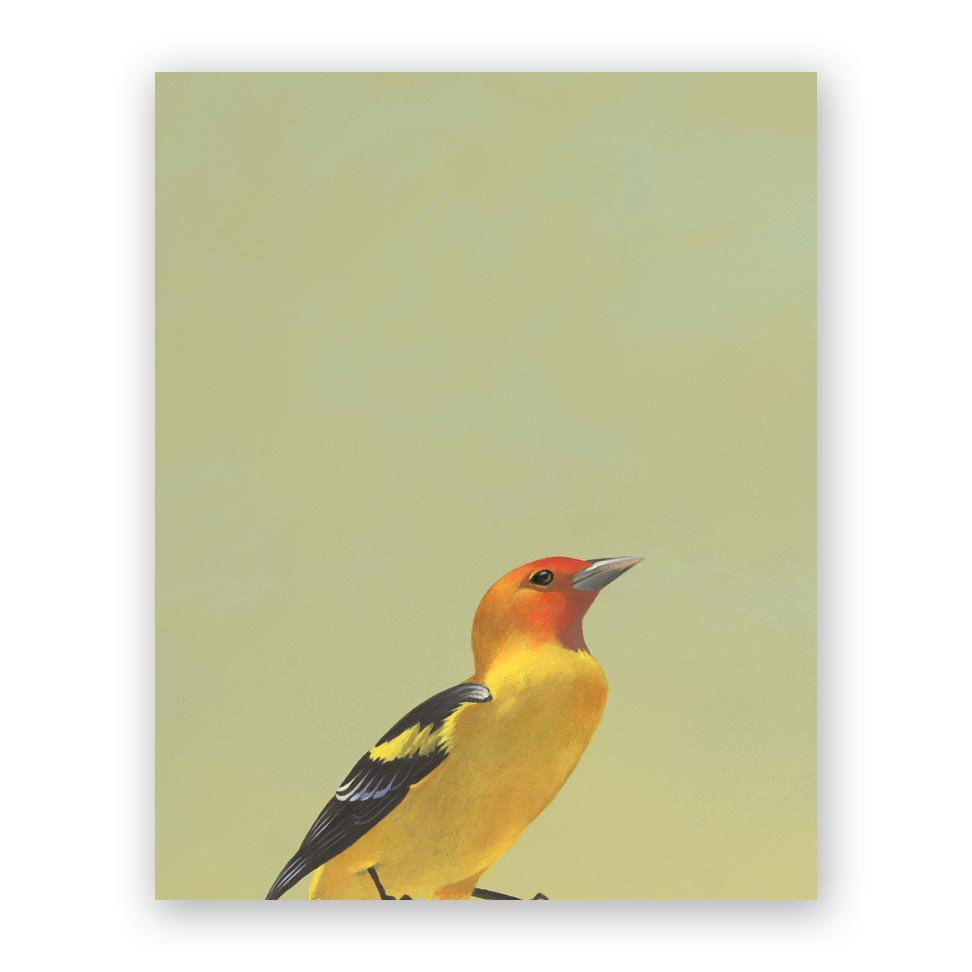 Western Tanager Wood Panel