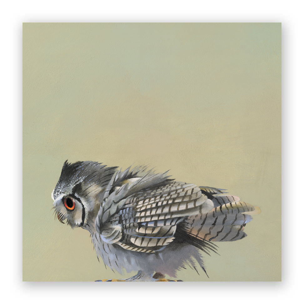10 x 10 Scops Owl Wings on Wood Decor
