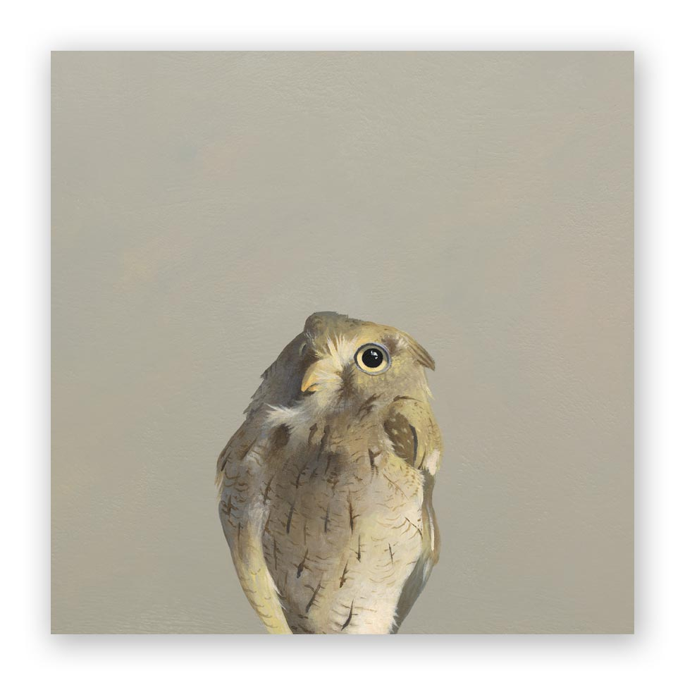 10 x 10 Screech Owl Wings on Wood Decor
