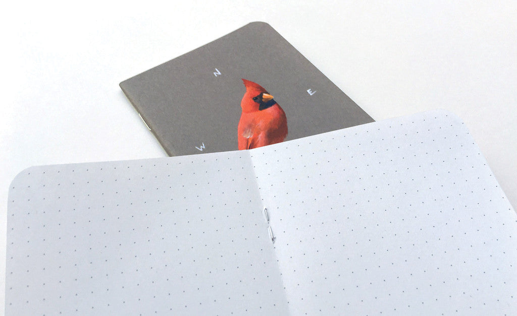 Set of 2 Watercolor Birds Mini-Notebooks - Collection 2