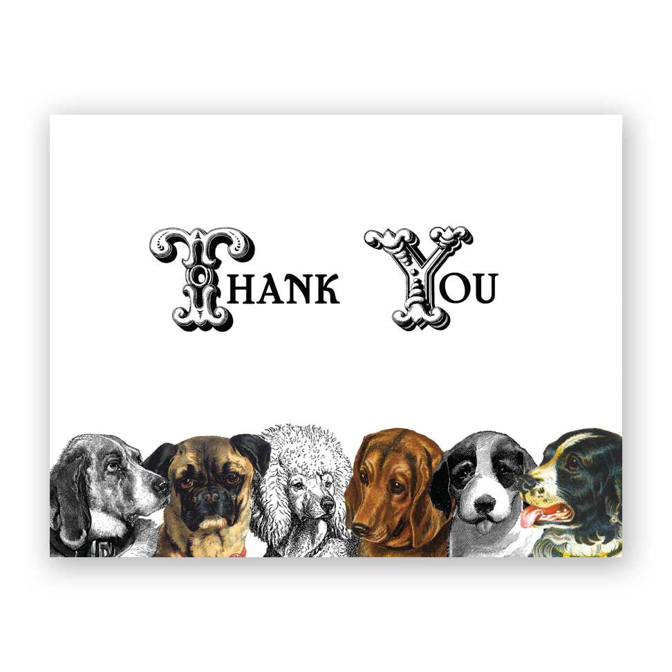 Well-known Thank You Dog Card – The Mincing Mockingbird & The Frantic Meerkat TV43