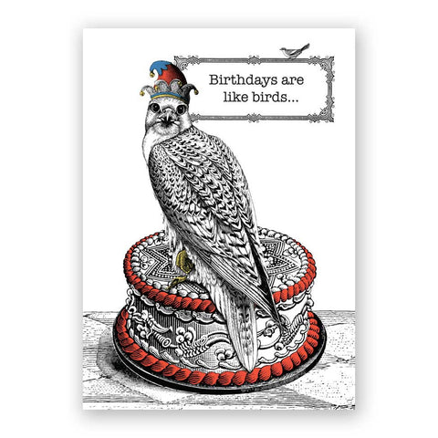 Meerkat Congratulations Card