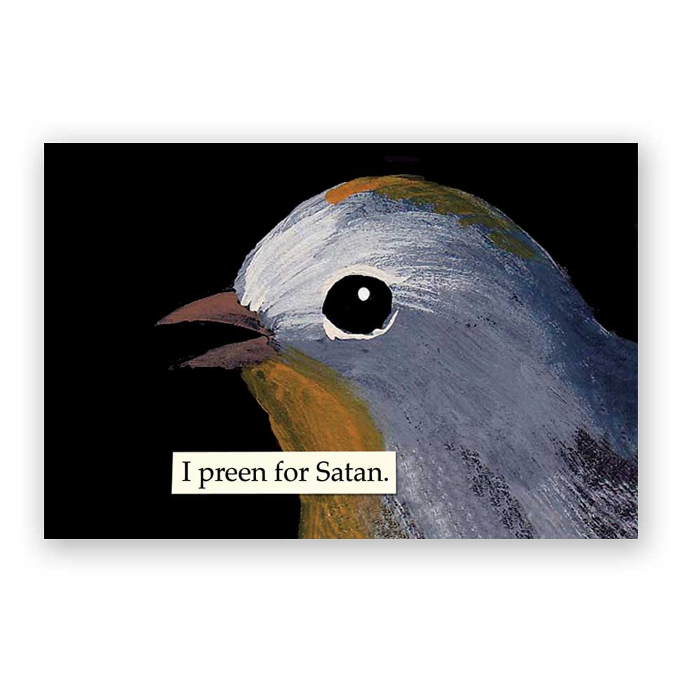 Troubled Birds Preen Postcards - Set of 12