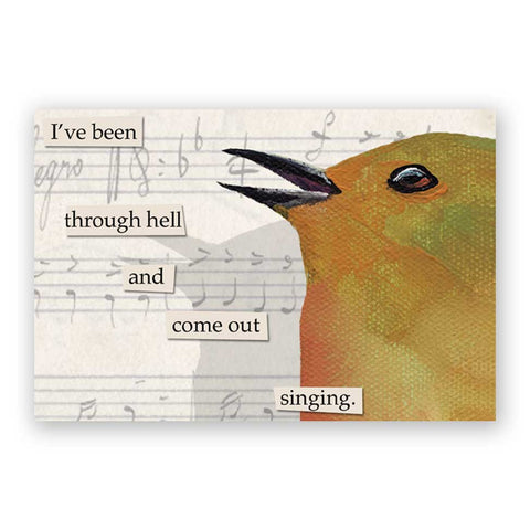 Cheap Wit Postcards - Set of 12 - Troubled Birds