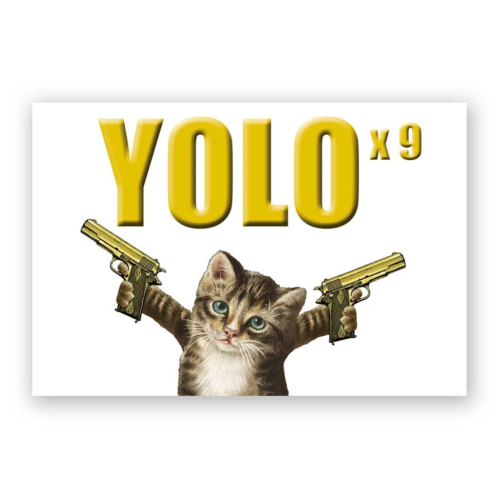 Yolo Cat Magnet