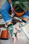 A model wearing pink cotton mis-matched women's crew socks with a green cuff by the brand Many Mornings feature beautiful potted Monstera plants and succulents all over the foot and leg while she gardens.