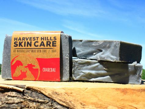 WHY IS CHARCOAL IN SKIN CARE