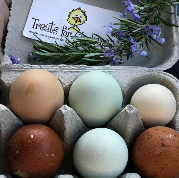 The Top Five Colorful Egg Layers