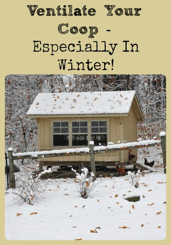 chicken coops ventilated winter