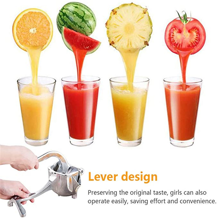 Manual Stainless Steel Mini Juicer-Fruit Squeezer Grinder Kitchen Gadget - MYTONSEE