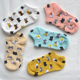 5 PAIR LITTLE CAT - Fashion Cat Design