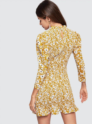 Miss Molly Ruffle Nell and Pop womens mustard summer party dress rear