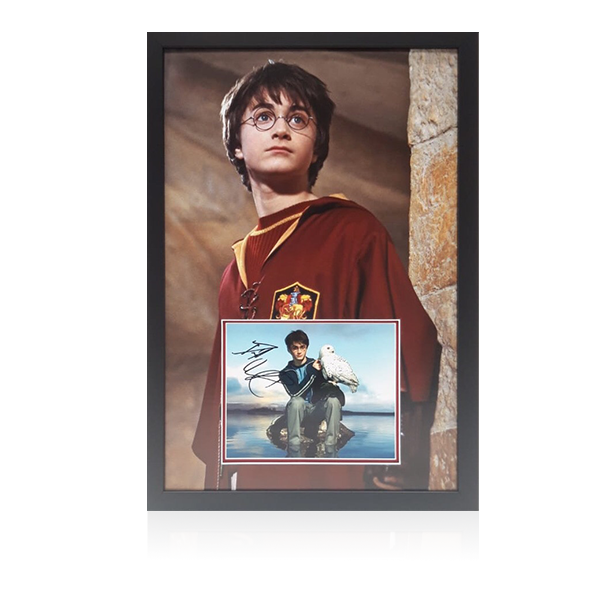 Daniel Radcliffe Signed Harry Potter Display