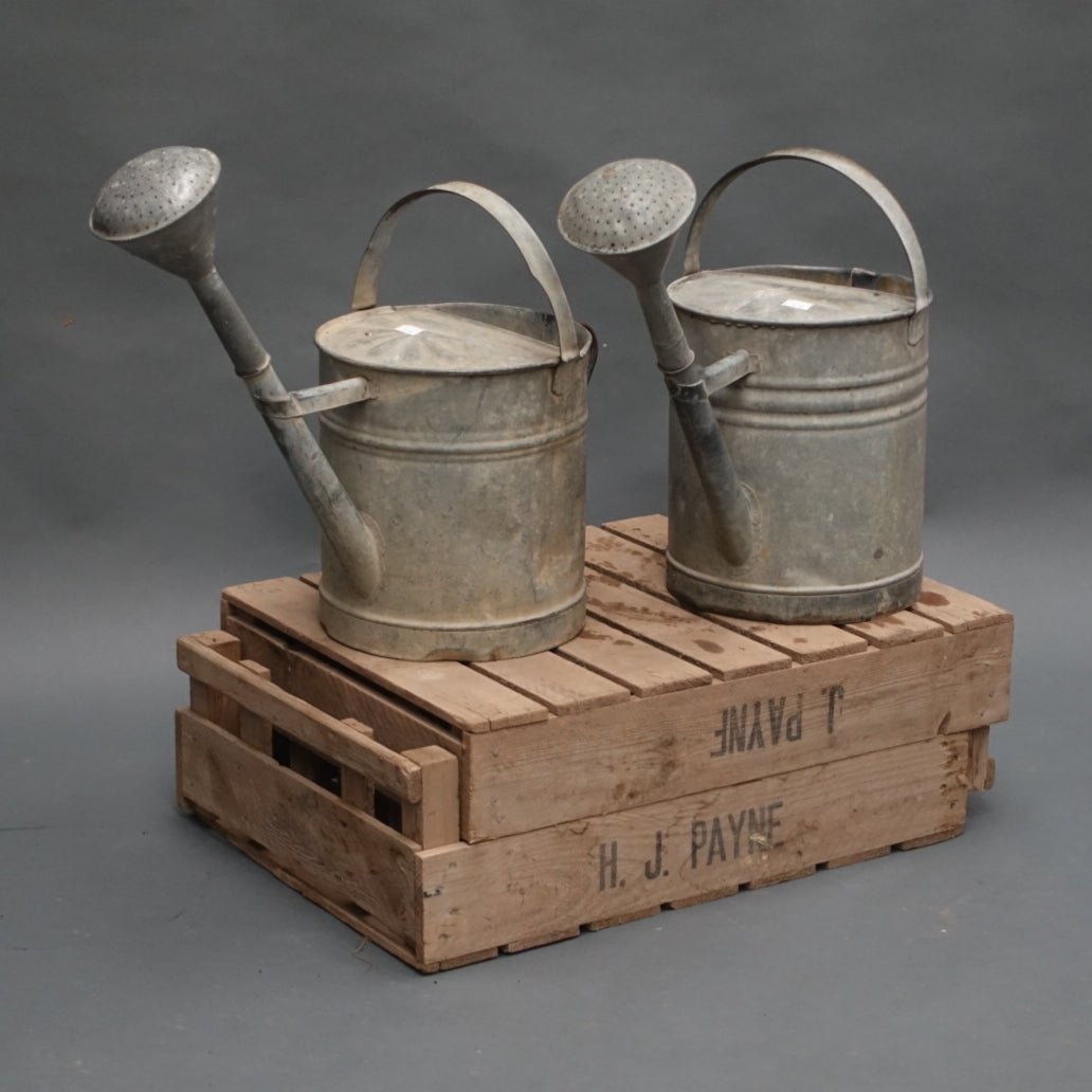 Hungarian galvanised watering cans with rose.