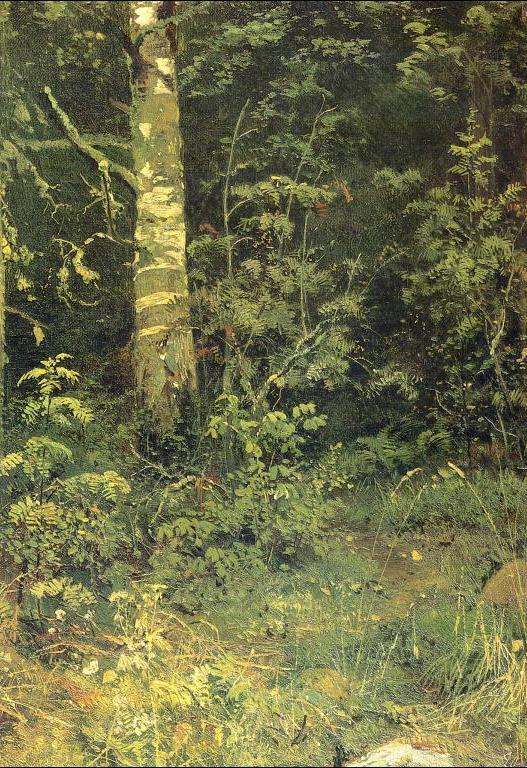 Ivan Shishkin - Birch and Pocks
