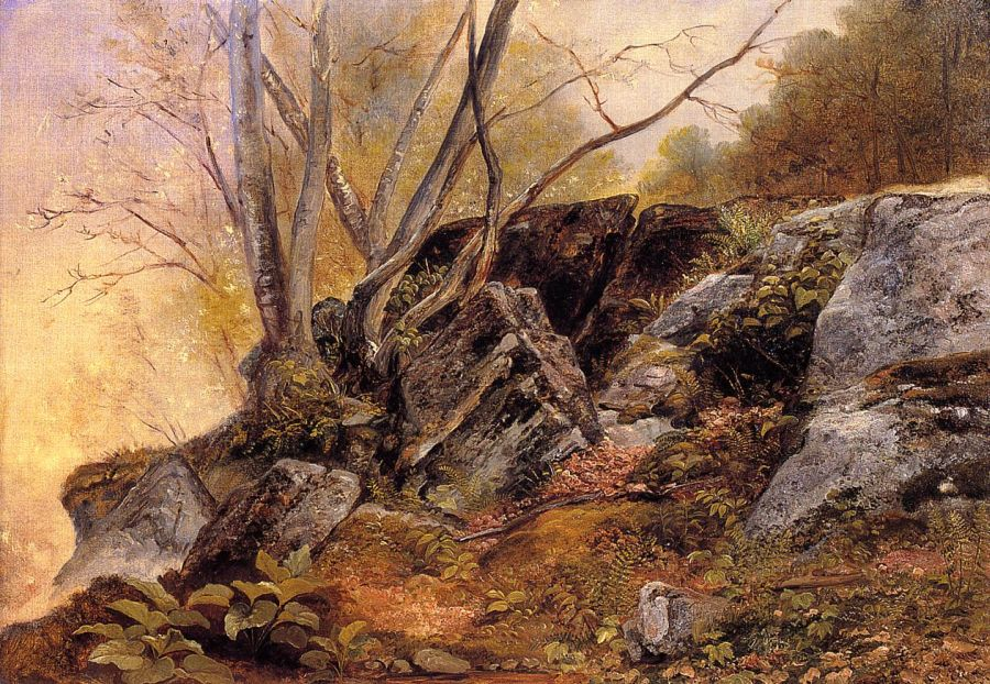 Asher B Durand - Study from Nature, Rocks and Trees