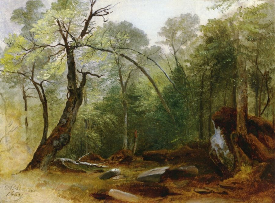 Asher B Durand - Study in the Woods