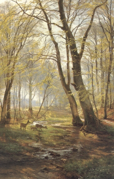 Carl Fredrik Aagard - Woodland Scene With Deer