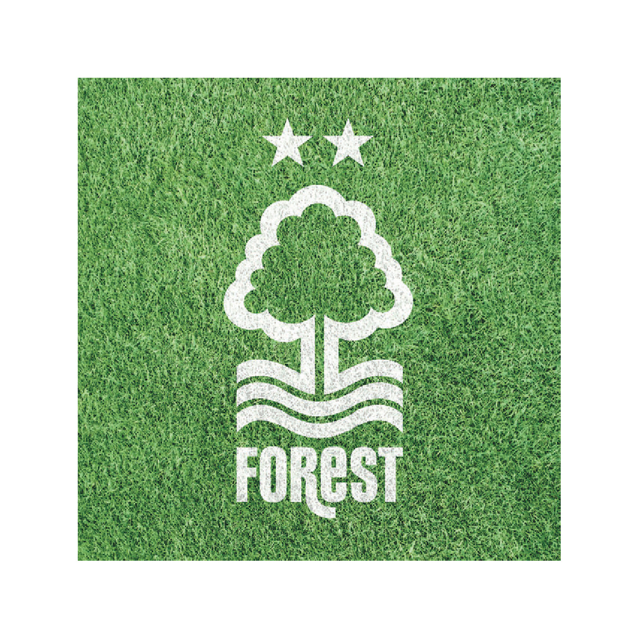 NFFC Crest on Astroturf Card - Nottingham Forest