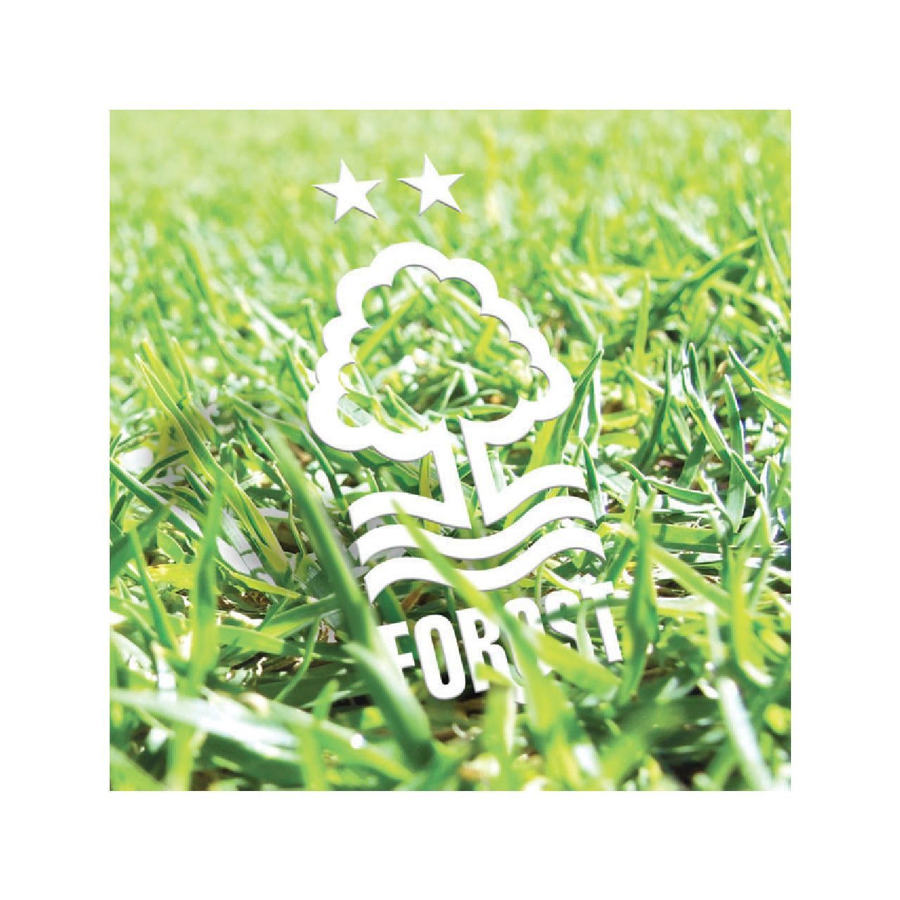 NFFC Crest in Grass Card - Nottingham Forest