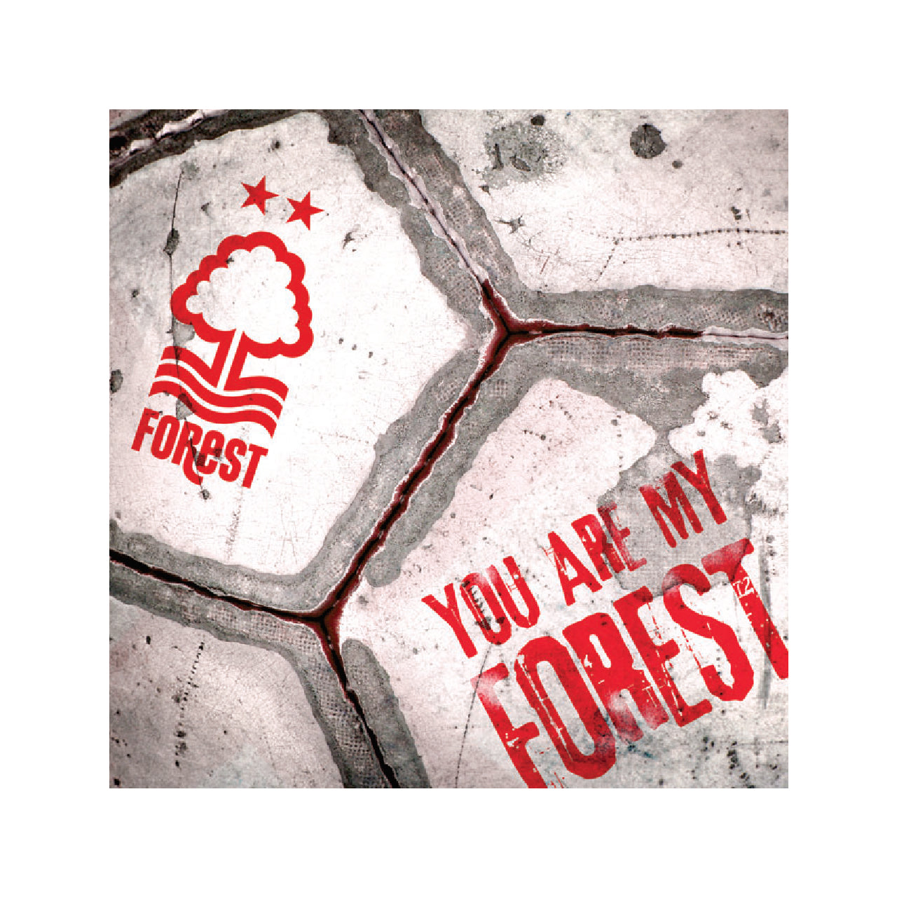 NFFC You Are My Forest Card