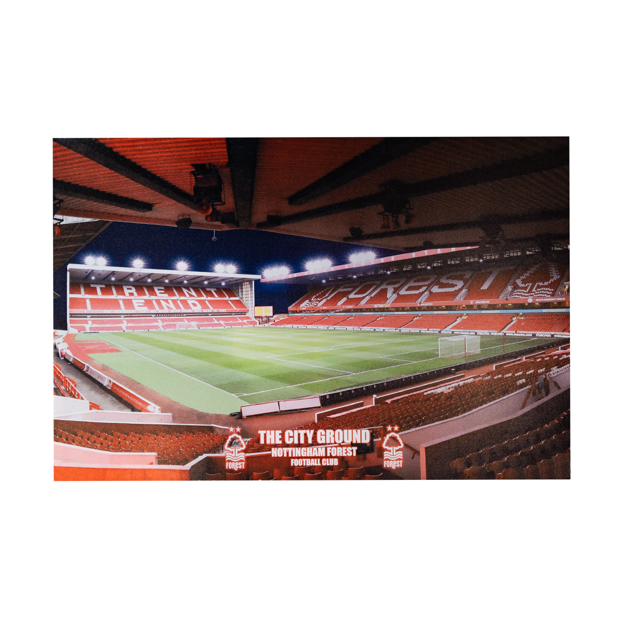 NFFC Panoramic Canvas