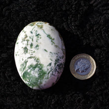 Load image into Gallery viewer, Green moss agate palmstone