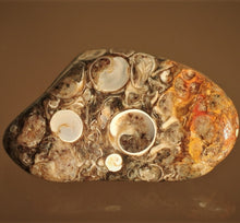 Load image into Gallery viewer, Turitella agate healing crystals